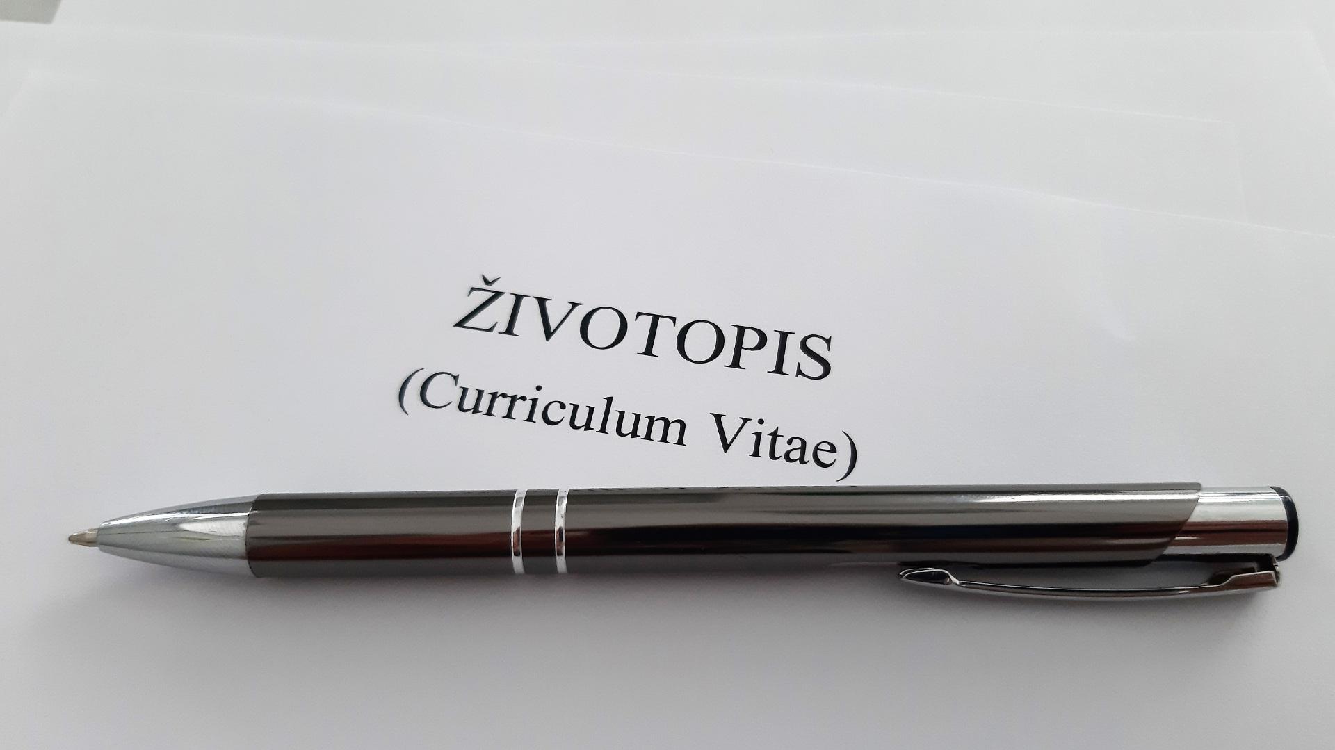 jak-napsat-zivotopis-vzor-zivotopisu