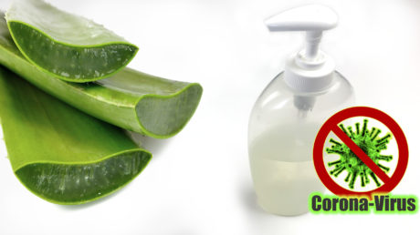 Jak vyrobit Desinfekční gel na ruce z aloe vera a ethanolu
