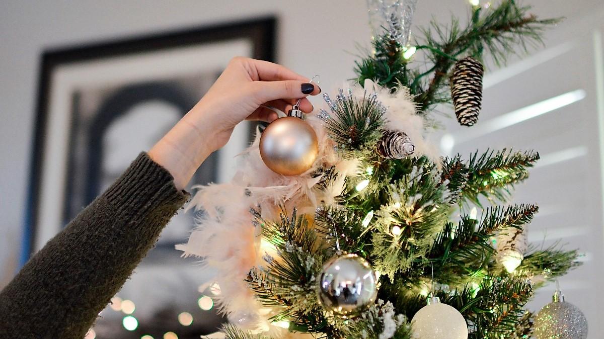Jak udržet vánoční stromek čerstvý
